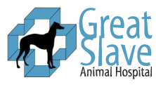 great slave animal hospital